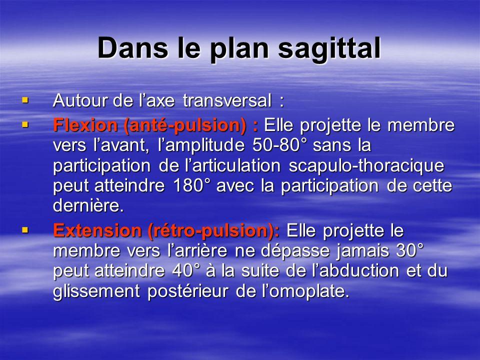 Dans le plan sagittal Autour de l'axe transversal :