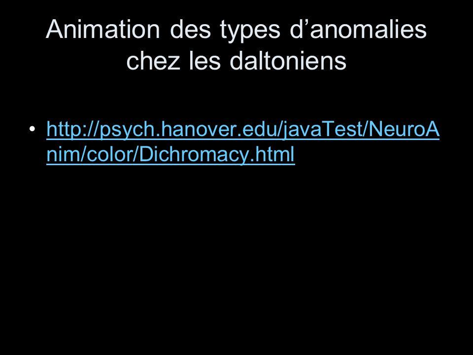 Animation des types d'anomalies chez les daltoniens