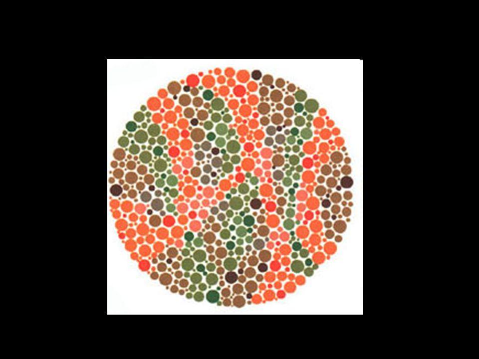 Un daltonien va voir le chiffre 45