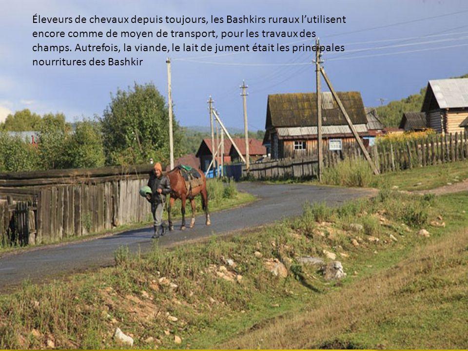 Éleveurs de chevaux depuis toujours, les Bashkirs ruraux l'utilisent encore comme de moyen de transport, pour les travaux des champs.