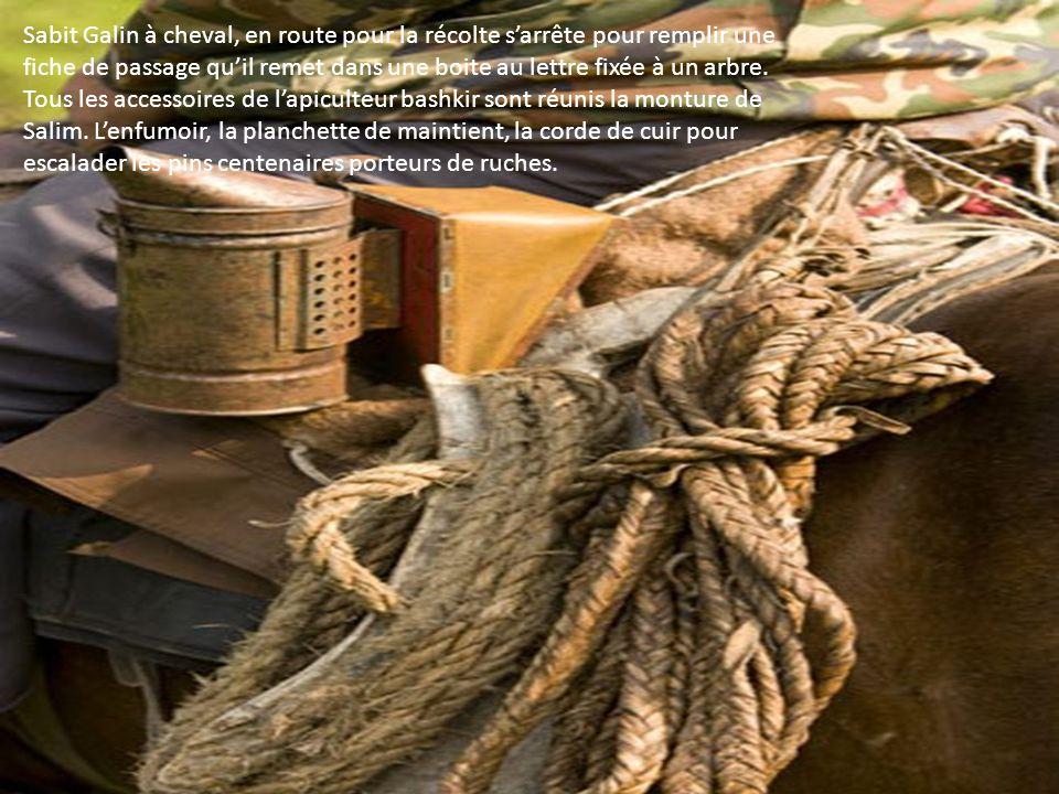 Sabit Galin à cheval, en route pour la récolte s'arrête pour remplir une fiche de passage qu'il remet dans une boite au lettre fixée à un arbre.