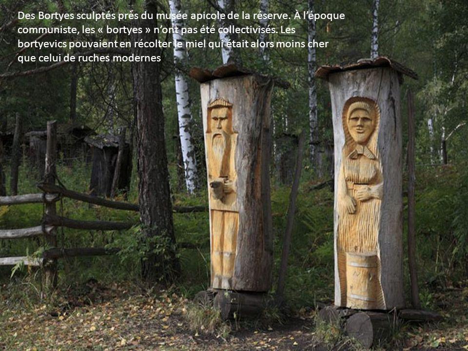 Des Bortyes sculptés près du musée apicole de la réserve