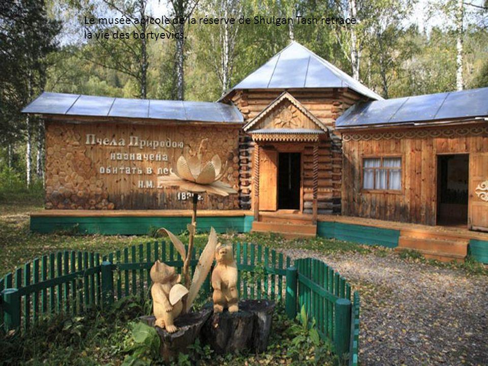 Le musée apicole de la réserve de Shulgan Tash retrace la vie des bortyevics.