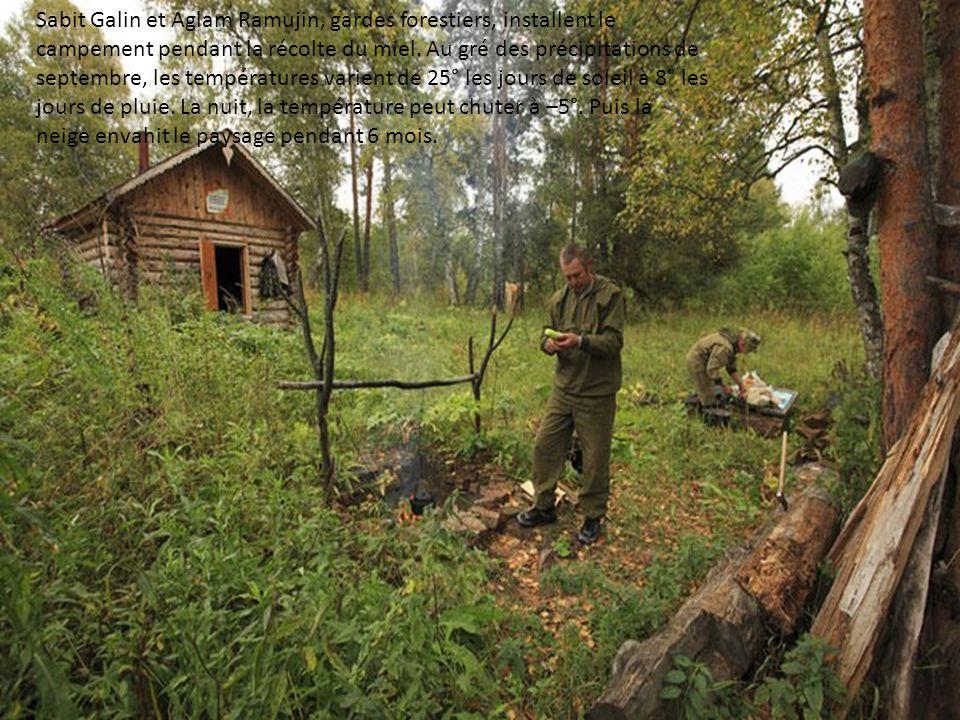 Sabit Galin et Aglam Ramujin, gardes forestiers, installent le campement pendant la récolte du miel.