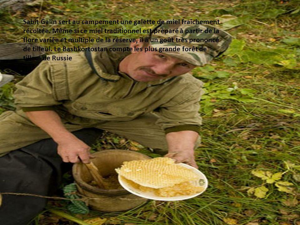 Sabit Galin sert au campement une galette de miel fraîchement récoltée