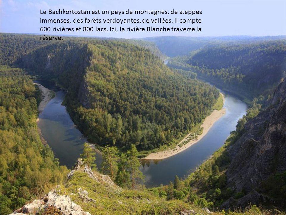 Le Bachkortostan est un pays de montagnes, de steppes immenses, des forêts verdoyantes, de vallées.