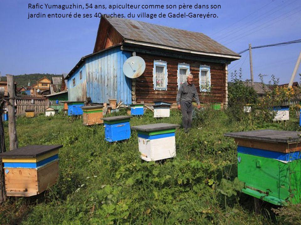 Rafic Yumaguzhin, 54 ans, apiculteur comme son père dans son jardin entouré de ses 40 ruches.