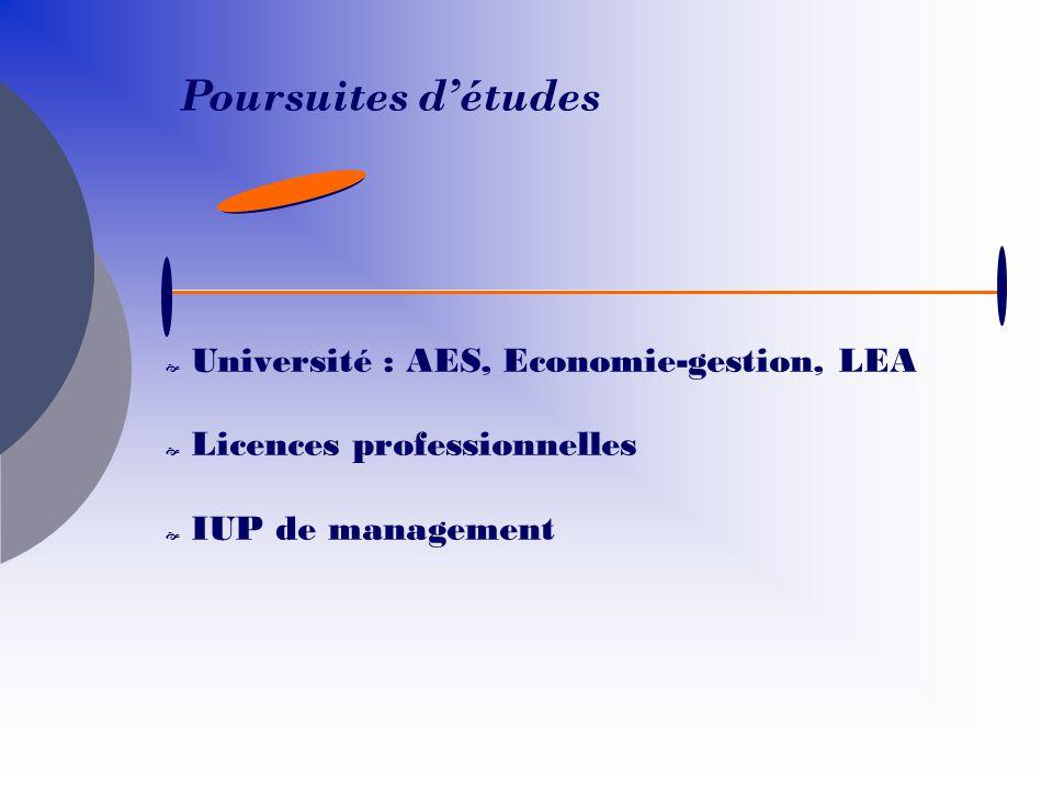 Poursuites d'études Université : AES, Economie-gestion, LEA