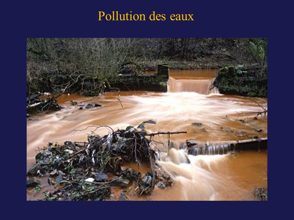 Pollution des eaux