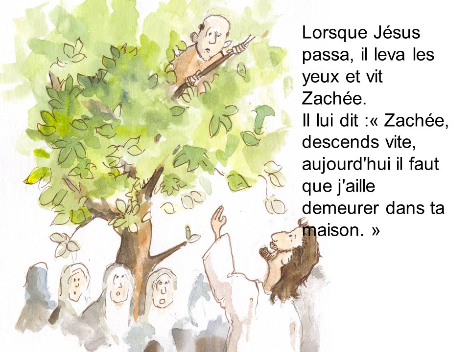 Lorsque Jésus passa, il leva les yeux et vit Zachée