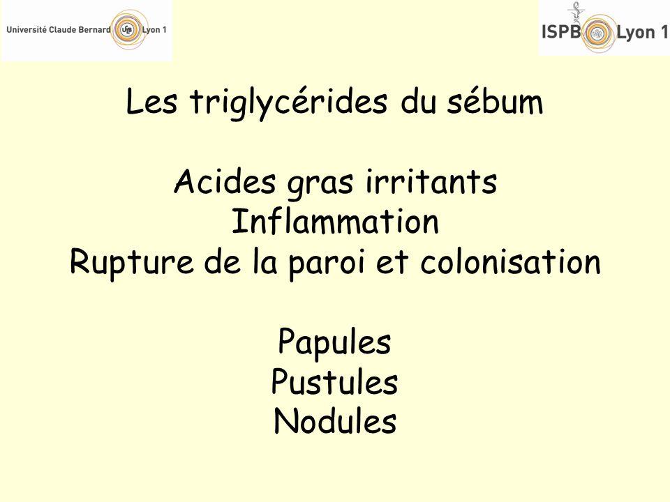Les triglycérides du sébum Acides gras irritants Inflammation