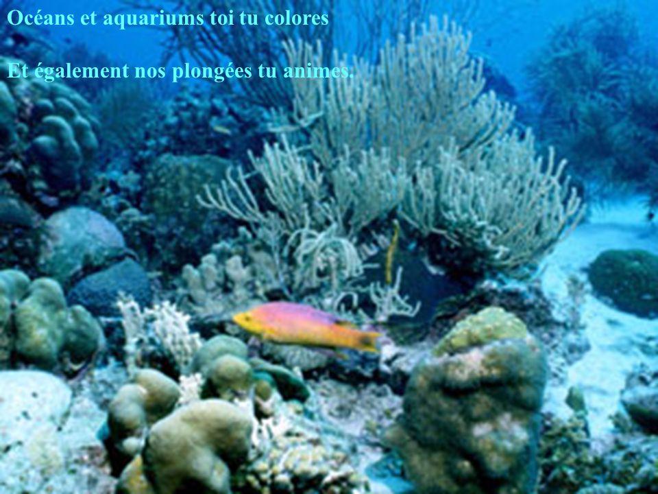 Océans et aquariums toi tu colores