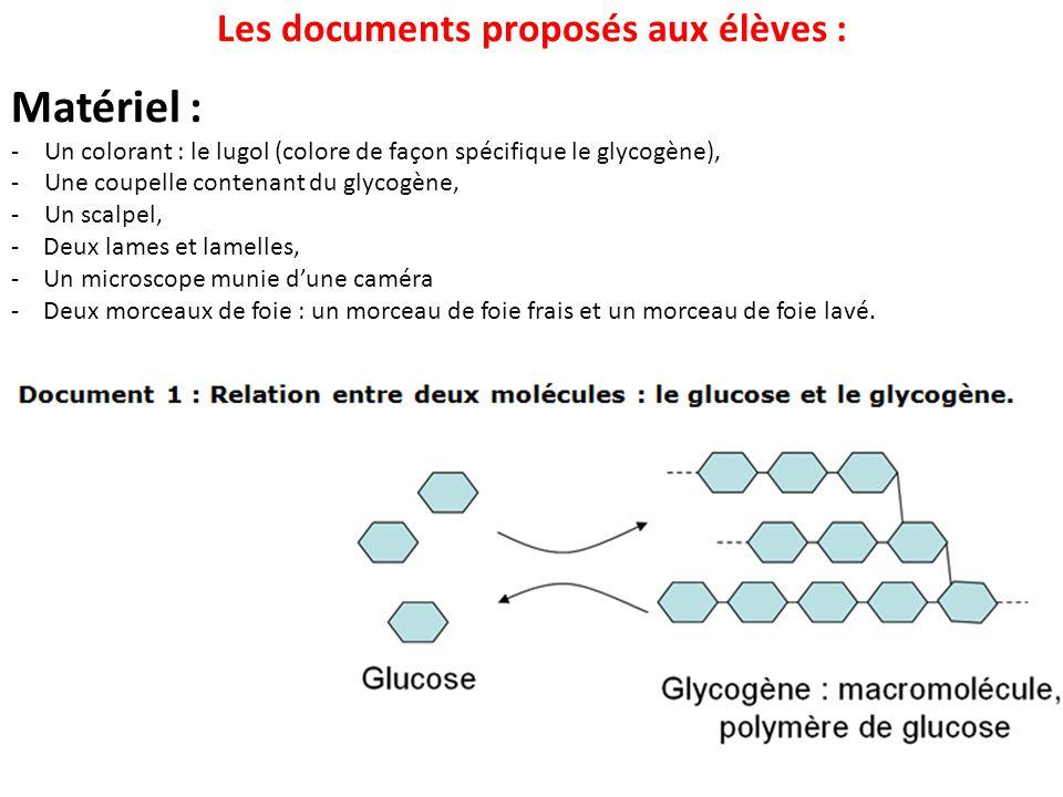 Les documents proposés aux élèves :