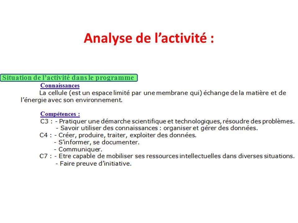 Analyse de l'activité :