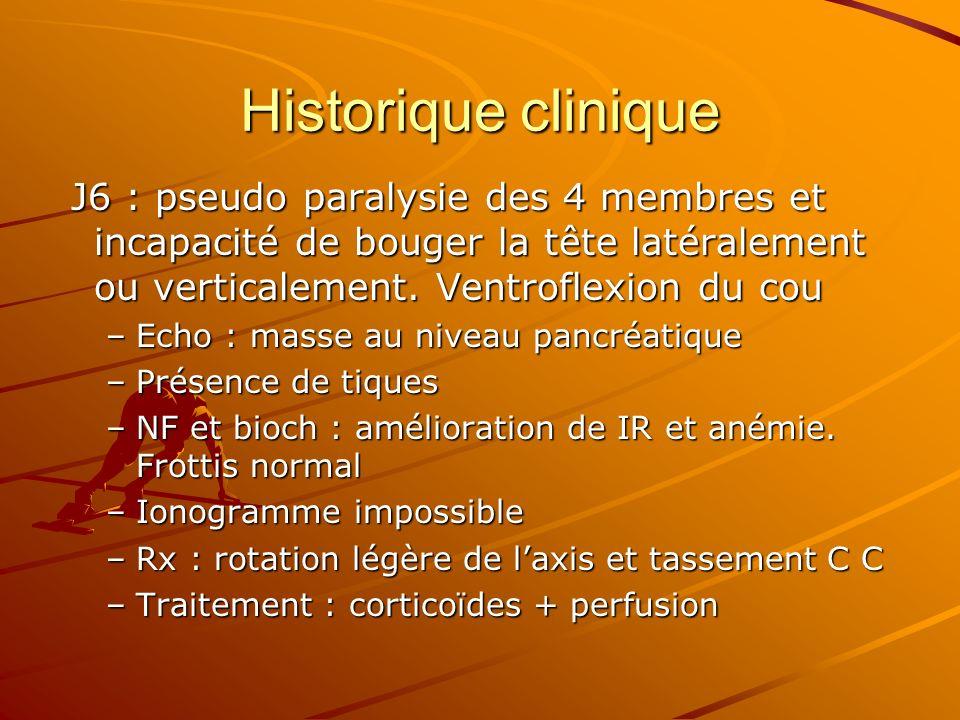 Historique clinique J6 : pseudo paralysie des 4 membres et incapacité de bouger la tête latéralement ou verticalement. Ventroflexion du cou.
