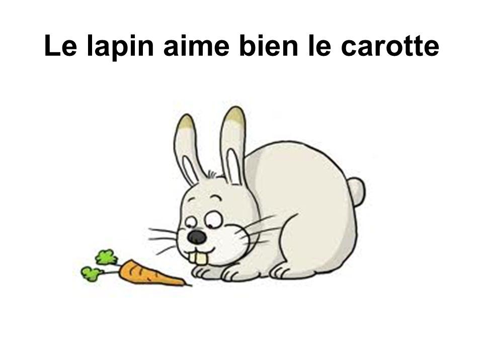 Le lapin aime bien le carotte