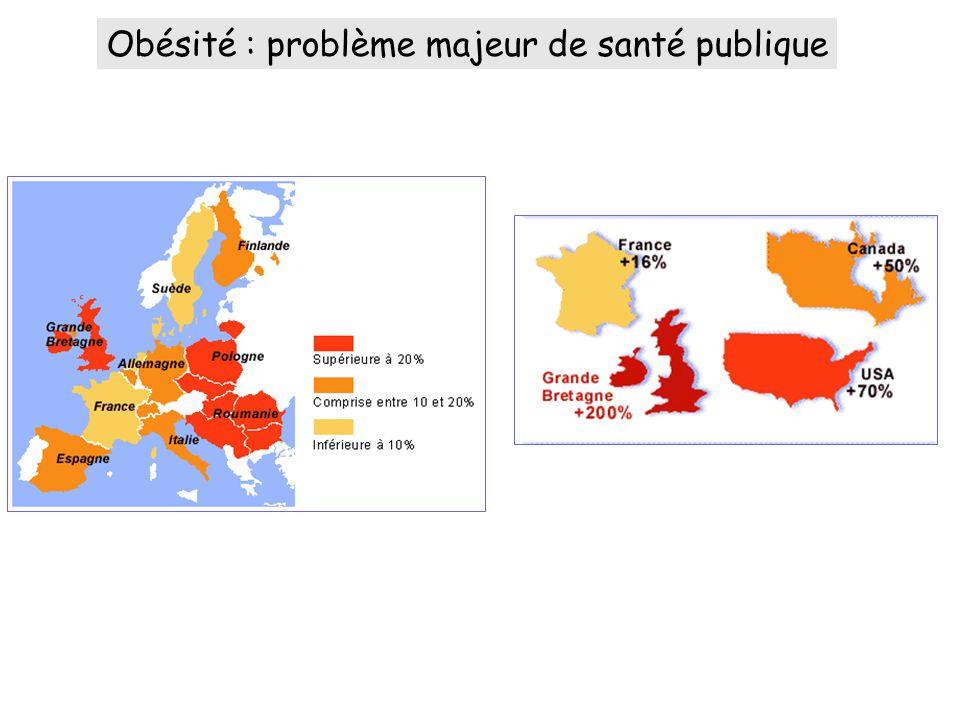 Obésité : problème majeur de santé publique