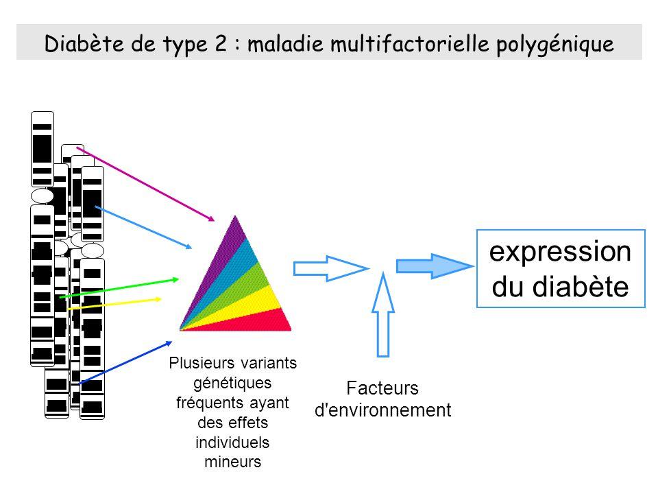 Diabète de type 2 : maladie multifactorielle polygénique