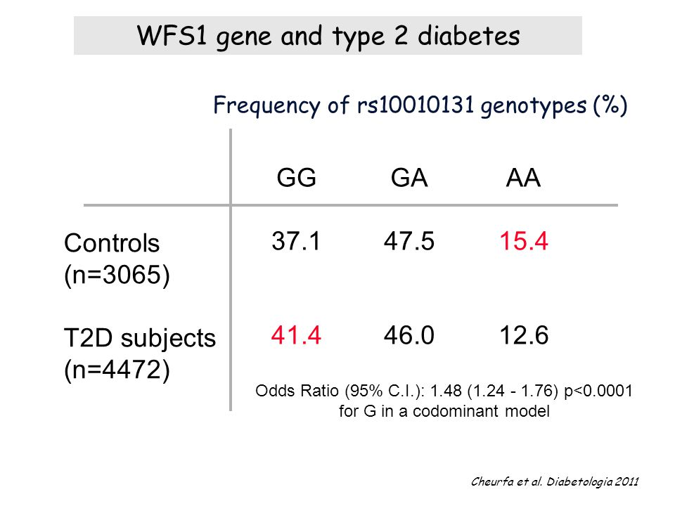 WFS1 gene and type 2 diabetes