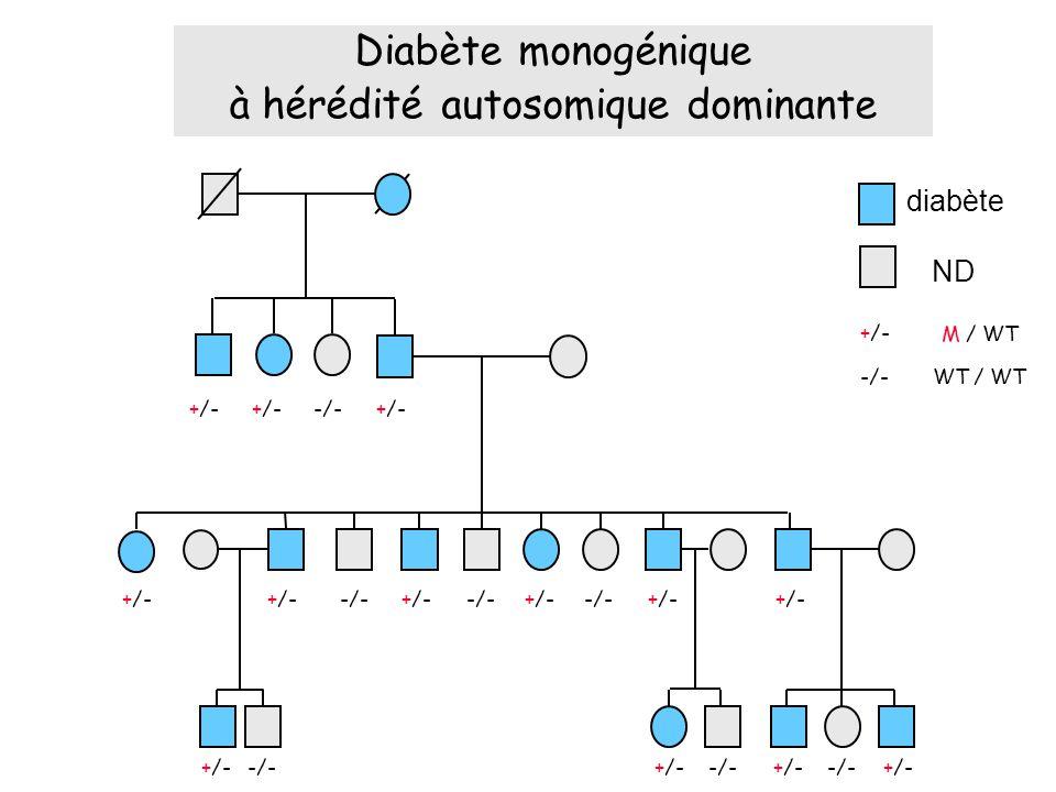 Diabète monogénique à hérédité autosomique dominante