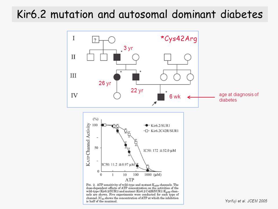 Kir6.2 mutation and autosomal dominant diabetes
