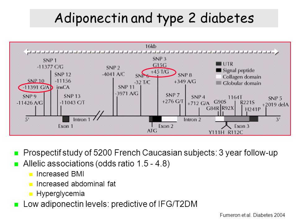 Adiponectin and type 2 diabetes