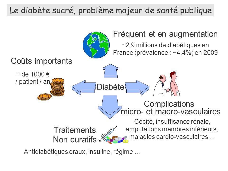 Le diabète sucré, problème majeur de santé publique