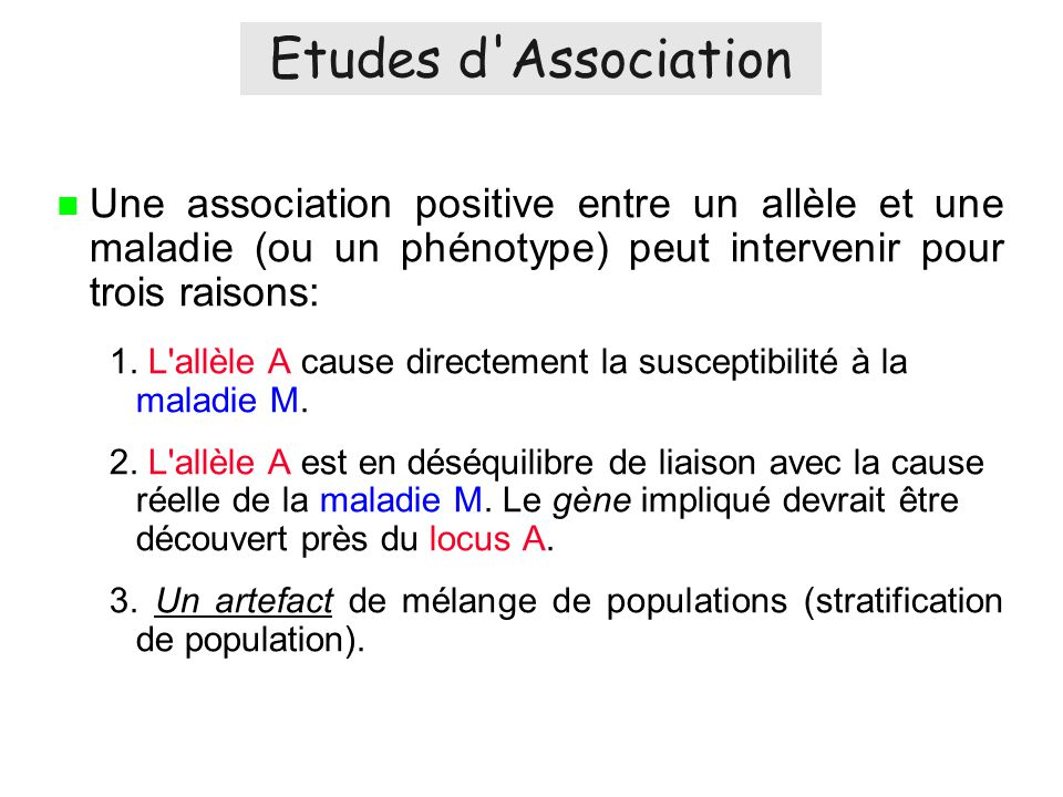 Etudes d Association Une association positive entre un allèle et une maladie (ou un phénotype) peut intervenir pour trois raisons: