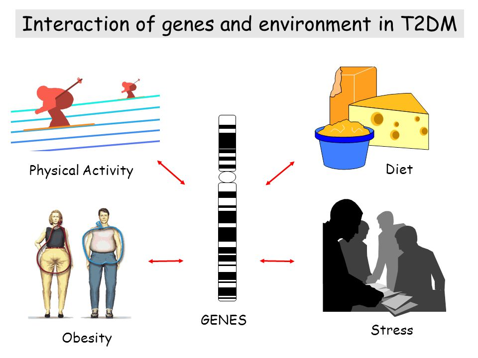 Interaction of genes and environment in T2DM