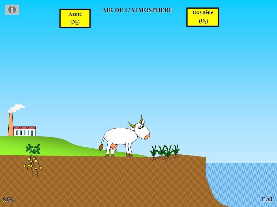 AIR DE L'ATMOSPHERE Azote (N2) Oxygène (O2) EAU SOL