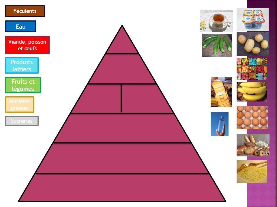 Eau Produits laitiers Fruits et légumes Féculents