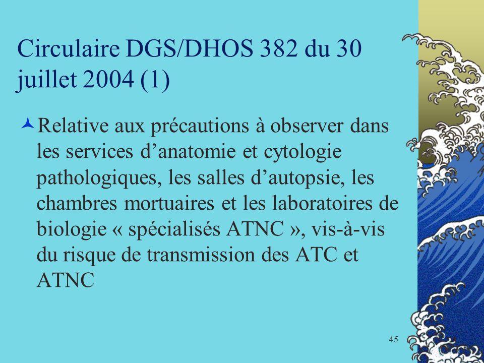 Circulaire DGS/DHOS 382 du 30 juillet 2004 (1)