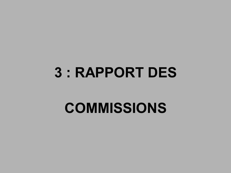 3 : RAPPORT DES COMMISSIONS