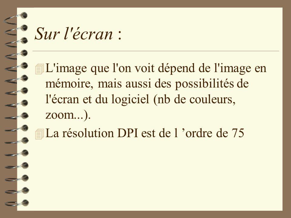 Sur l écran : L image que l on voit dépend de l image en mémoire, mais aussi des possibilités de l écran et du logiciel (nb de couleurs, zoom...).