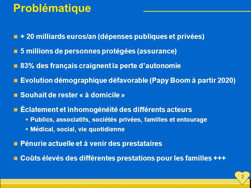 Problématique + 20 milliards euros/an (dépenses publiques et privées)