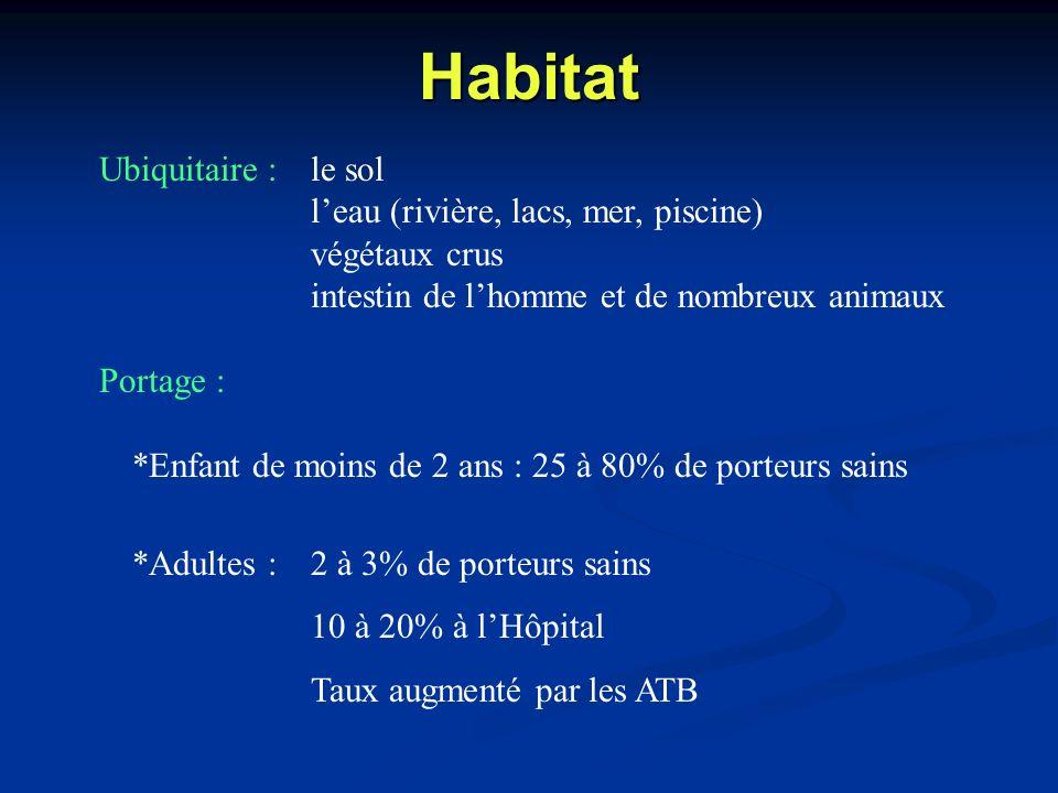 Habitat Ubiquitaire : le sol l'eau (rivière, lacs, mer, piscine)