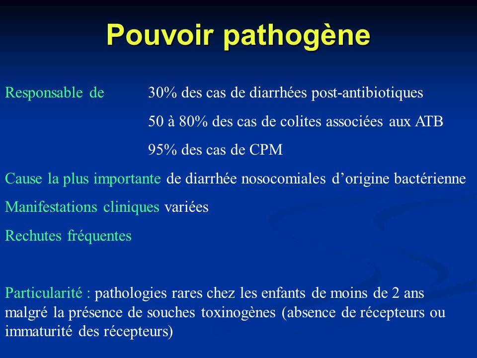Pouvoir pathogèneResponsable de 30% des cas de diarrhées post-antibiotiques. 50 à 80% des cas de colites associées aux ATB.