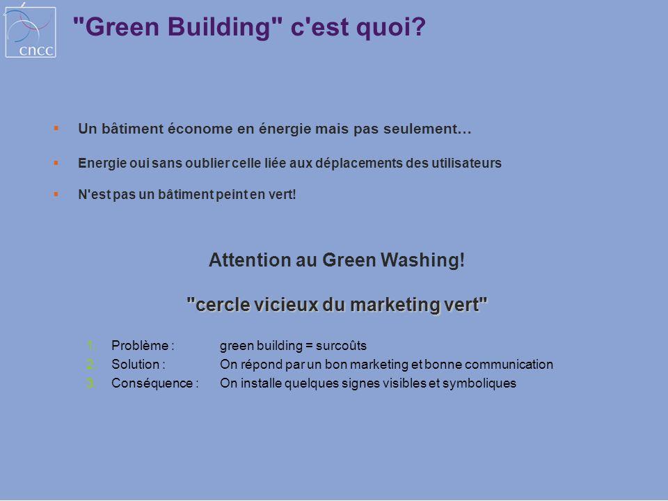 Attention au Green Washing! cercle vicieux du marketing vert