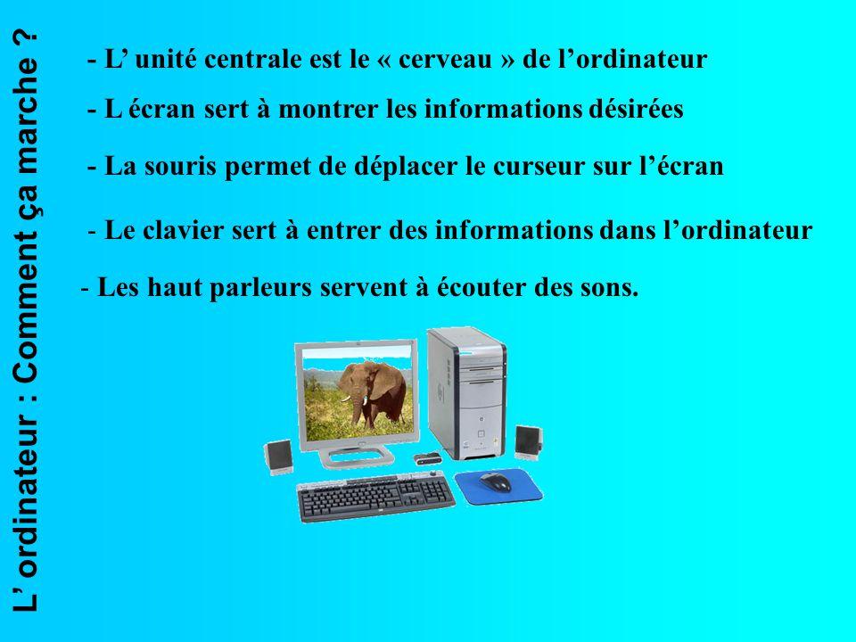 - L' unité centrale est le « cerveau » de l'ordinateur
