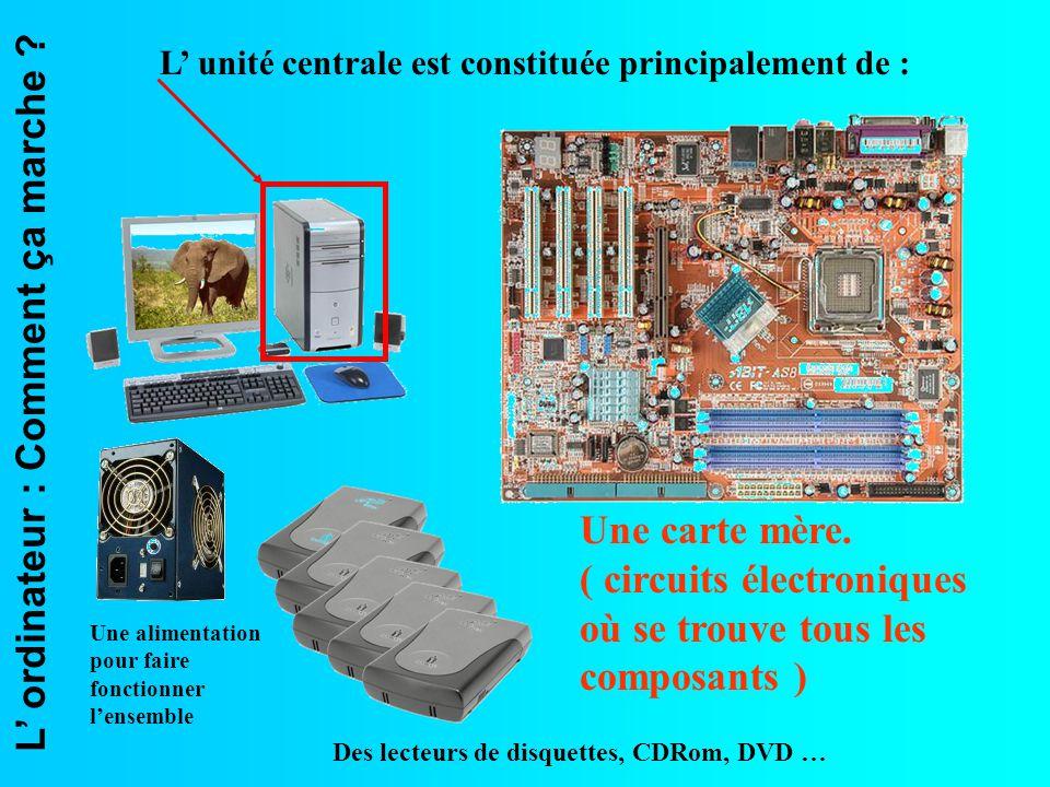 ( circuits électroniques où se trouve tous les composants )