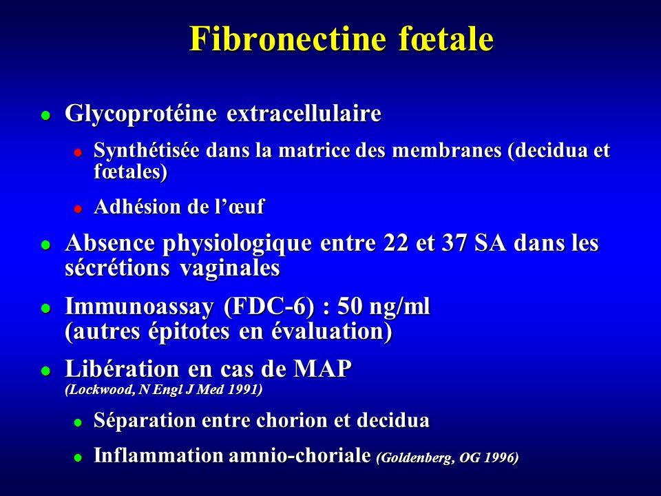 Fibronectine fœtale Glycoprotéine extracellulaire