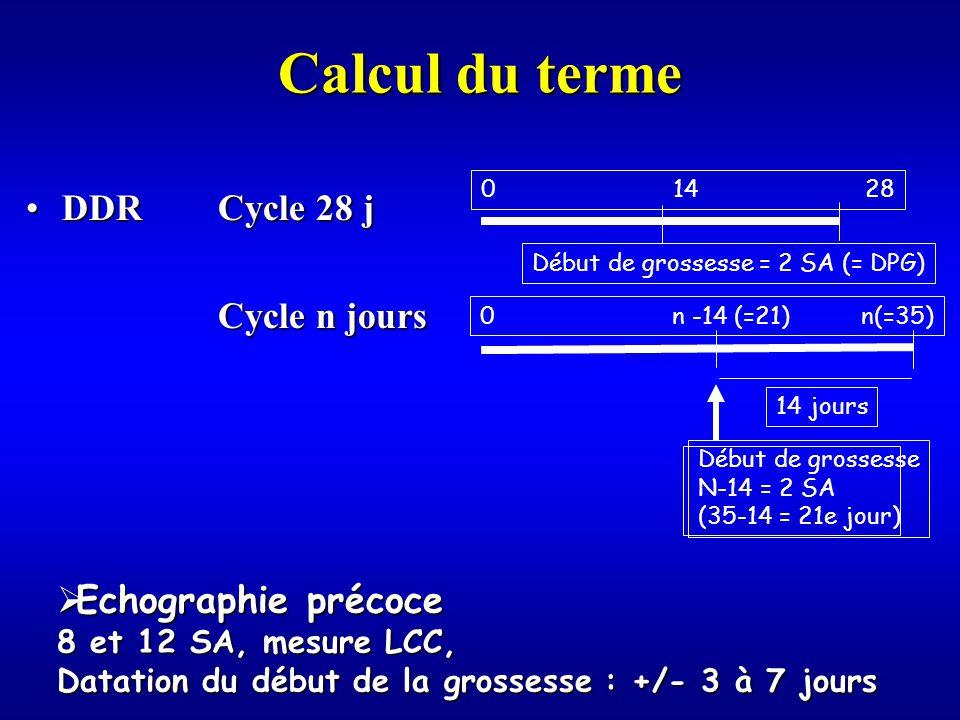 Calcul du terme DDR Cycle 28 j Cycle n jours Echographie précoce