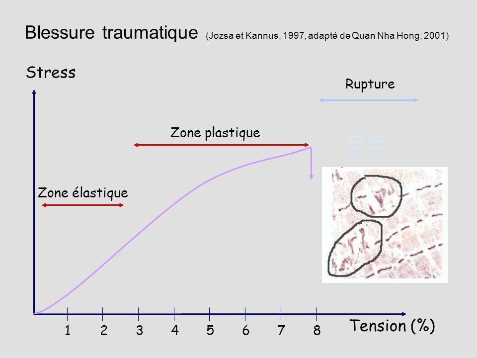 Blessure traumatique (Jozsa et Kannus, 1997, adapté de Quan Nha Hong, 2001)