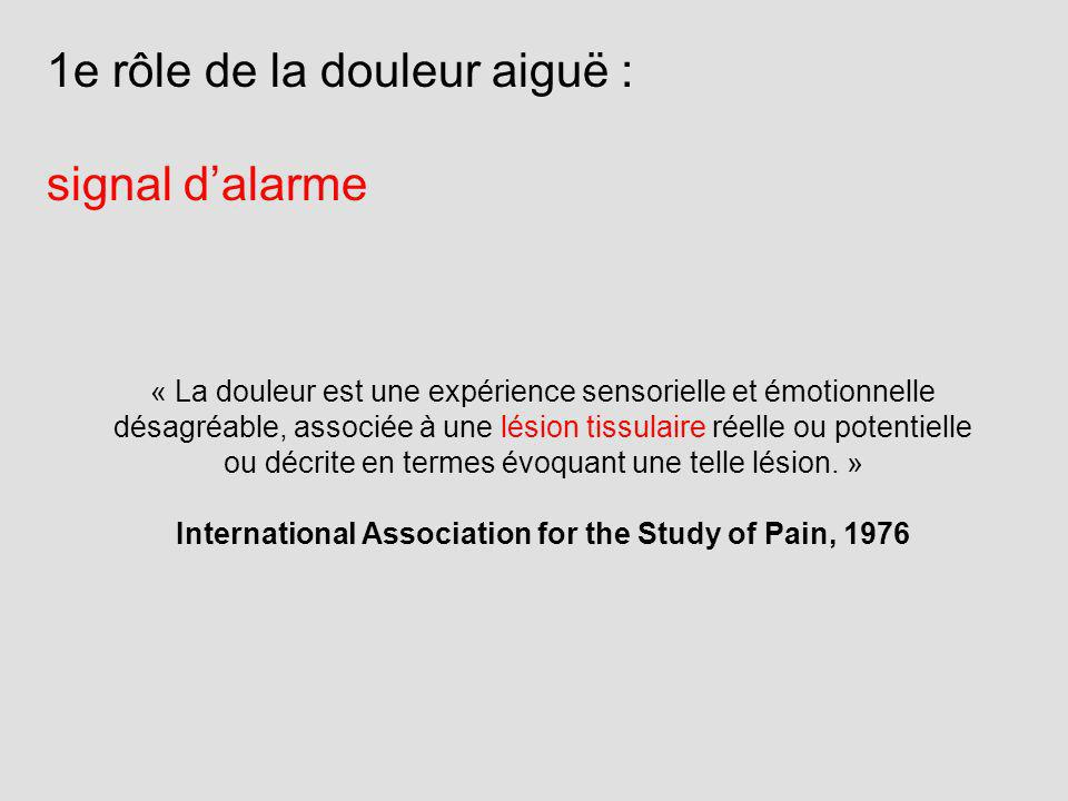 International Association for the Study of Pain, 1976