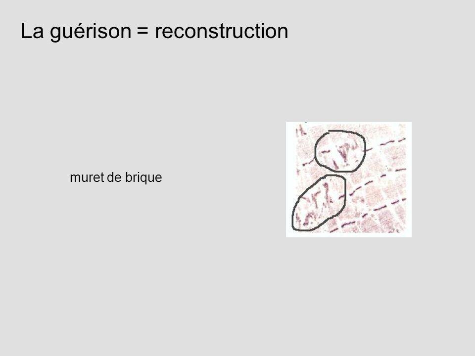 La guérison = reconstruction