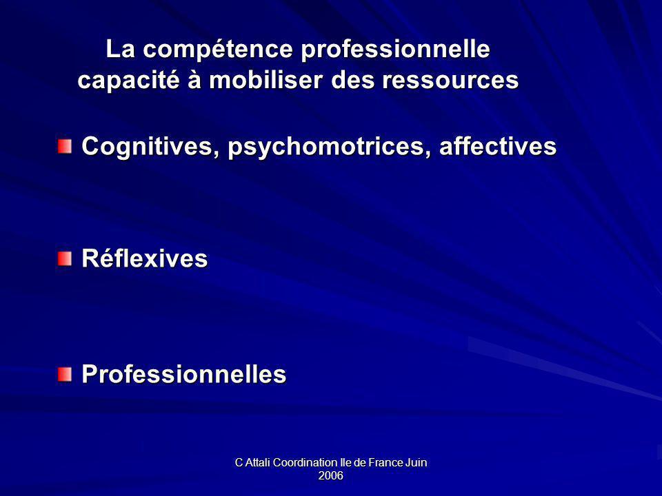 La compétence professionnelle capacité à mobiliser des ressources