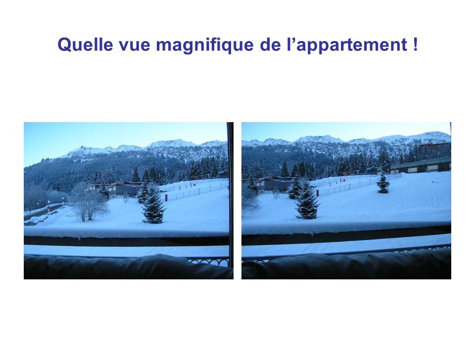Quelle vue magnifique de l'appartement !