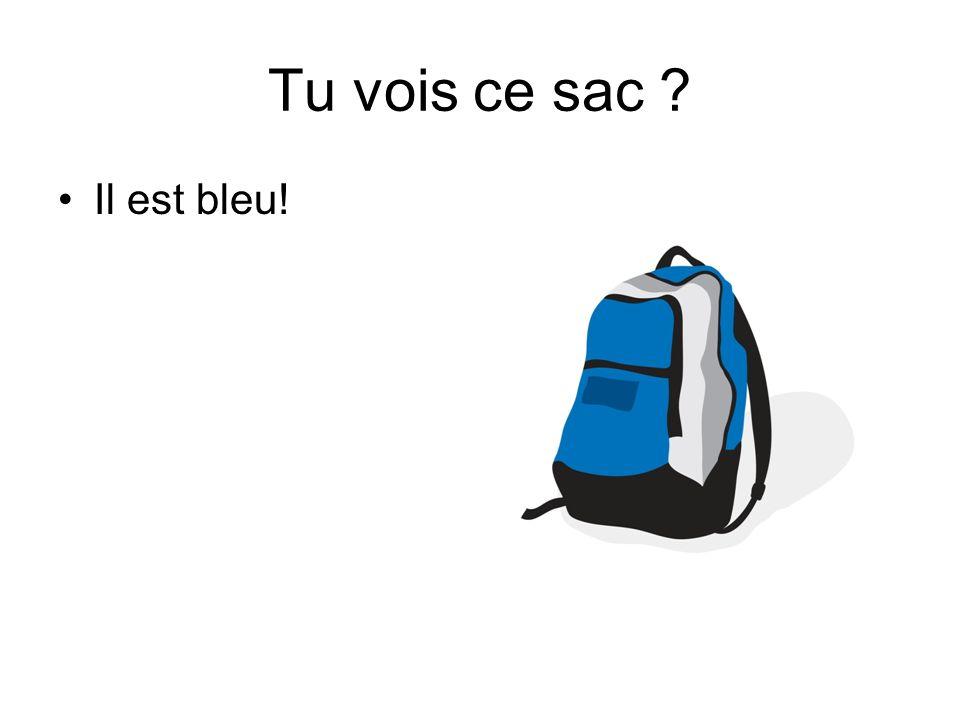 Tu vois ce sac Il est bleu!