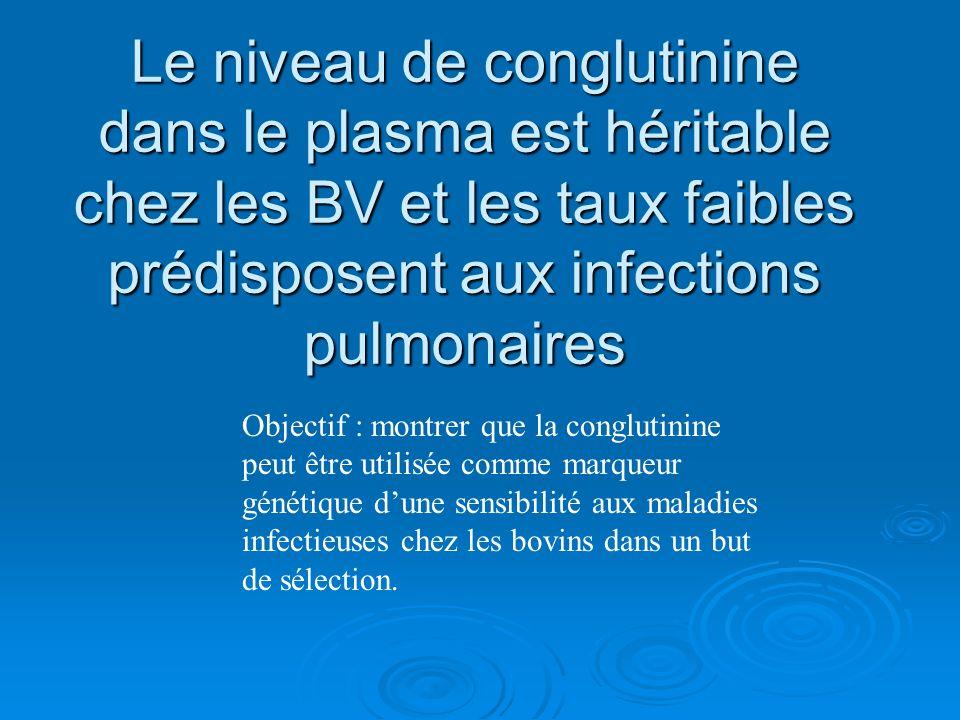 Le niveau de conglutinine dans le plasma est héritable chez les BV et les taux faibles prédisposent aux infections pulmonaires