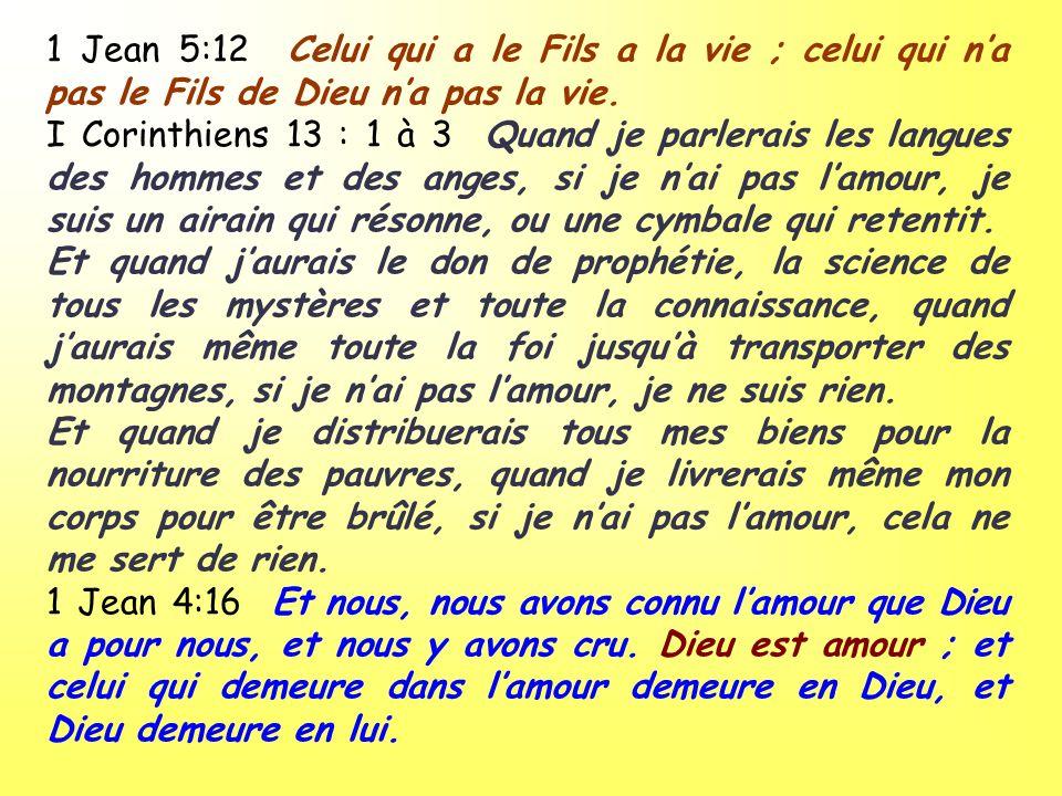 1 Jean 5:12 Celui qui a le Fils a la vie ; celui qui n'a pas le Fils de Dieu n'a pas la vie.
